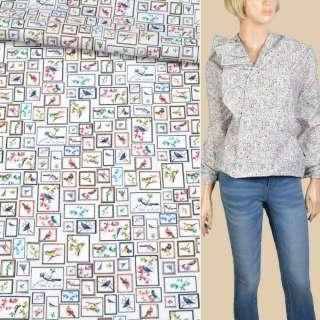 Коттон стрейч белый в квадраты с разноцветными птицами ш.145