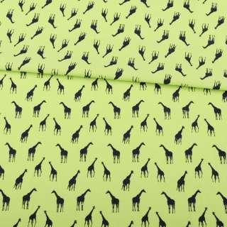Коттон салатовый, черные жирафы, ш.147