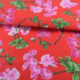 Деко-коттон красный, розовые орхидеи, ш.150